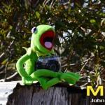 Kermit Wood